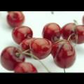 img_1136_video-fage-fruyo.jpg