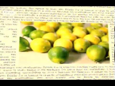 img_4057_video-sweethistorylemoni.jpg